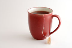 czerwone kubek herbaty Zdjęcia Stock