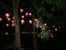 czerwone latarnie z chin zdjęcia royalty free