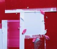 czerwone płatki kwiatów kolaż Obraz Stock