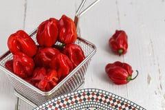 czerwone papryczki świeże Zdjęcia Royalty Free