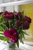 Czerwone peonie w wazie na okno Obraz Royalty Free