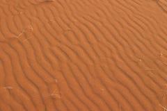 czerwone piasek fale Zdjęcie Stock