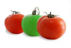 czerwone pomidorów Obraz Royalty Free