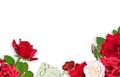Czerwone róże i prezent odizolowywający na białym tle kwiat rama Zdjęcie Stock