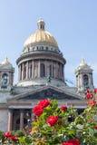 Czerwone róże przeciw St Isaac katedrze w lecie Zdjęcie Royalty Free
