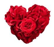Czerwone róże w kierowym kształcie odizolowywającym na bielu zdjęcia royalty free