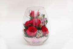 Czerwone róże w próżni Fotografia Stock