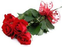 czerwone róże wiązek zdjęcia stock