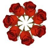 czerwone róże wieniec. Zdjęcie Stock