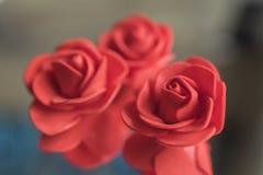 Czerwone róże dla dekoraci Obraz Royalty Free