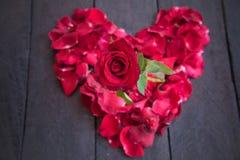 Czerwone róże na drewnianym tle, Retro rocznik, Obrazy Royalty Free