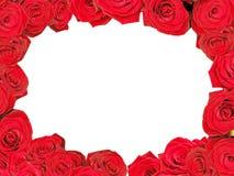 czerwone róże ramowych Zdjęcie Royalty Free