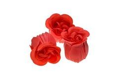 czerwone róże trzy Fotografia Royalty Free