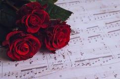 Czerwone róże z muzykalnymi notatkami Obrazy Royalty Free