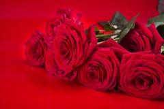 czerwone romantyczne róże Zdjęcia Royalty Free