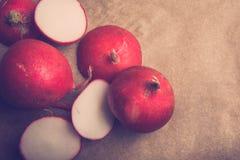 Czerwone rzodkwie całe i pokrojone Obraz Royalty Free