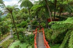 czerwone schody Obraz Royalty Free