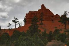 czerwone skały zimę kanion Fotografia Stock
