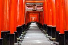 Czerwone Tori bramy wykładają drogi przemian Fushimi Inari świątynia, Kyoto Zdjęcie Royalty Free