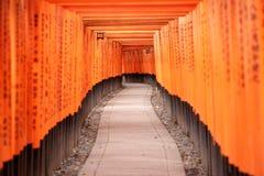 Czerwone Torii bramy w Fushimi Inari ?wi?tyni obrazy royalty free