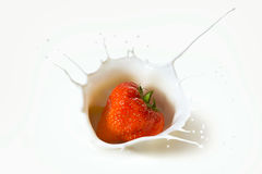 Czerwone truskawkowe owoc spada w mleko Obraz Royalty Free