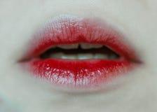Czerwone wargi krwionośne Zdjęcia Royalty Free