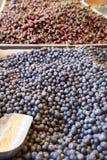 Czerwone wiśnie i świeżo ukradzione czarne jagody obrazy stock