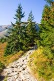 Czerwone Wierchy, Tatrzańskie góry Obrazy Stock