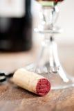 Czerwone wino degustacja Fotografia Royalty Free