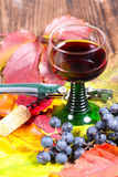 Czerwone wino i corkscrew Zdjęcie Stock