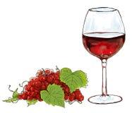 Czerwone wino i winograd ilustracji