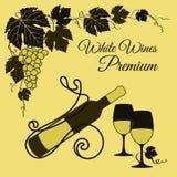 Czerwone wino set Obrazy Royalty Free