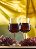 Czerwone wino trzonu szkła słuzyć z winogronami zdjęcia stock