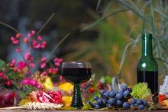 Czerwone wino w jesień wieczór Obrazy Stock