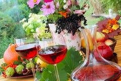 Czerwone wino w późnym lecie Fotografia Stock