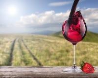 Czerwone wino z lato sceny tłem obrazy royalty free