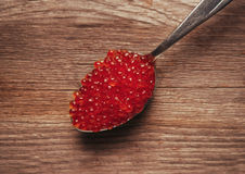 Czerwonego łososia kawior na łyżce Obraz Royalty Free