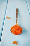 Czerwonego łososia kawior w łyżce Zdjęcia Royalty Free