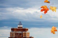 Czerwonego żółtego klonu spada liście nad drapaczem chmur na błękitnym clou Obrazy Royalty Free