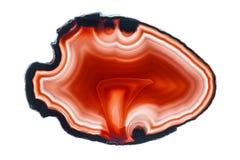 Czerwonego agata plasterka round kopalina odizolowywająca na bielu Fotografia Royalty Free