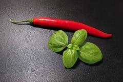 Czerwonego chili basilu i pieprzu liście Zdjęcia Stock