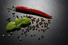 Czerwonego chili basilu i pieprzu liście Zdjęcie Stock