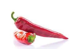 Czerwonego chili pieprz Fotografia Royalty Free