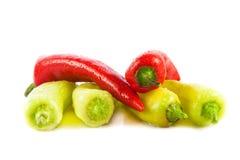 Czerwonego chili pieprz odizolowywający na białego tła jarzynowym jarskim jedzeniu Obrazy Royalty Free