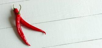 Czerwonego chili pieprz odizolowywający na białym tle Fotografia Royalty Free