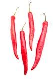 Czerwonego chili pieprze Obraz Stock