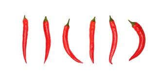 Czerwonego chili pieprze na białym tle bez cieni Zdjęcia Royalty Free