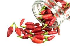 Czerwonego chili pieprze na słoju Obraz Stock