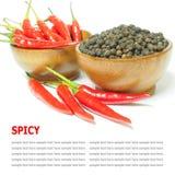 Czerwonego chili pieprzu i czarnego pieprzu korzenny odosobniony na bielu Obraz Stock