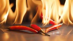 Czerwonego chili spada puszek z płomieniami w tle w zwolnionym tempie zbiory wideo